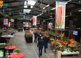 A very successful Tulip Trade Event