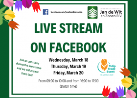 Live stream on Facebook